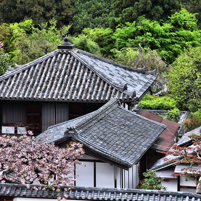 Japan Nakasendo Way: A journey into the heart of Japan Image 7