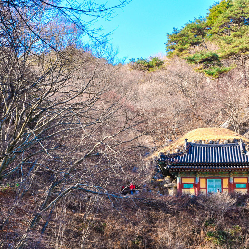 Comprehensive South Korea Tour Image 10
