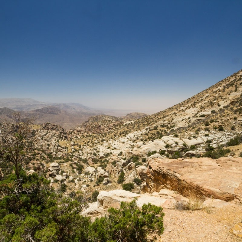 Trekking and Adventure Jordan Image 5