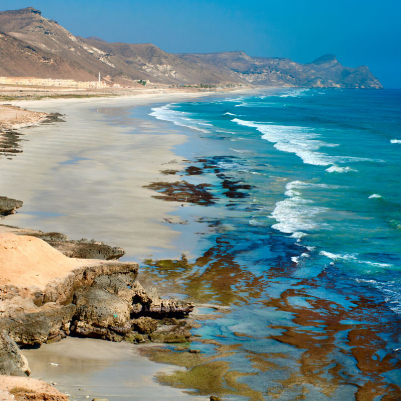 Comprehensive Oman and UAE private tour Image 8