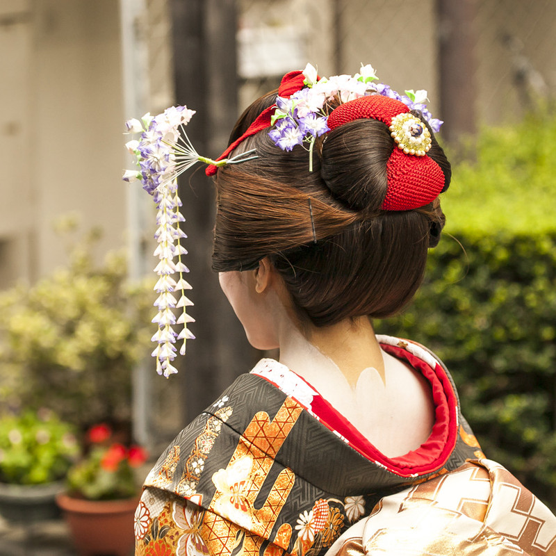 Comprehensive tour of Japan Image 10