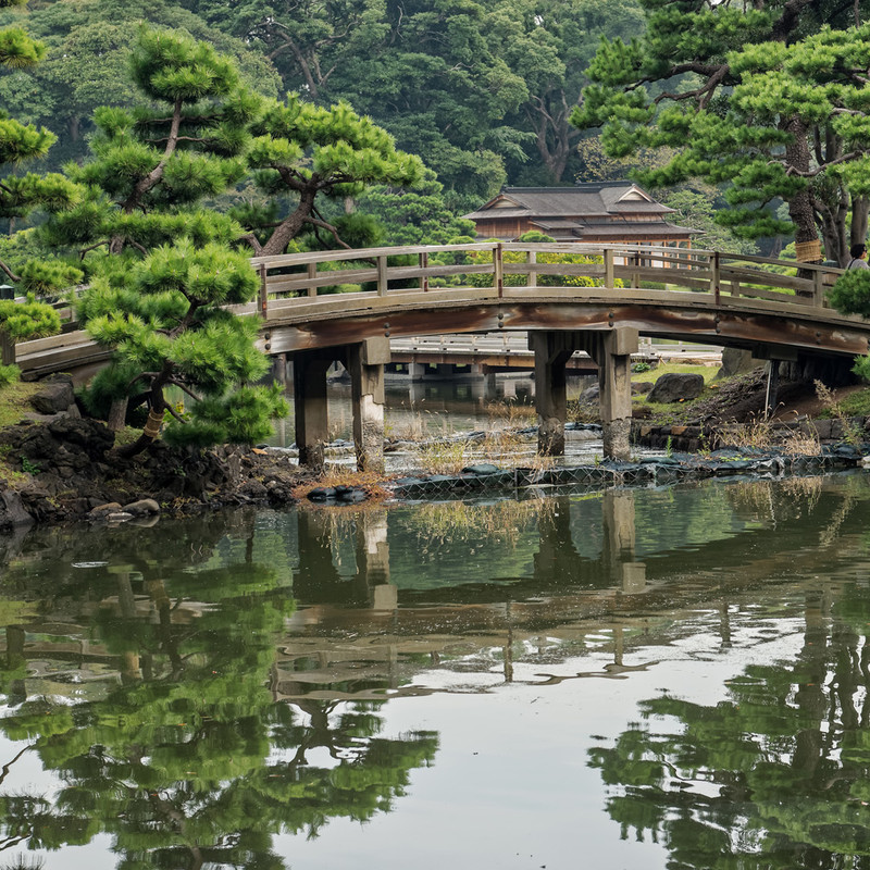 Comprehensive tour of Japan Image 2