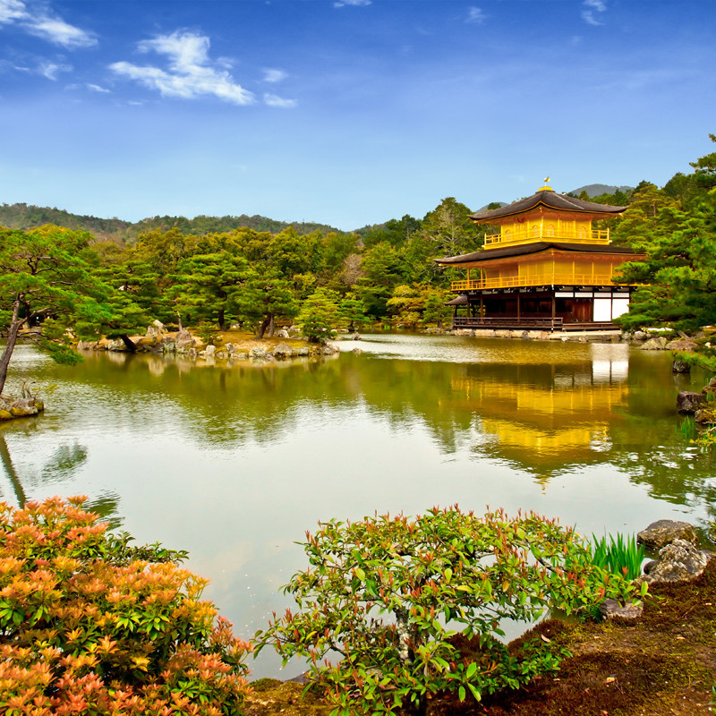 Comprehensive tour of Japan Image 11