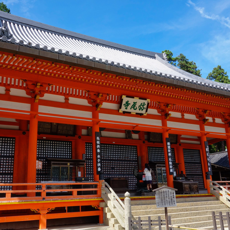 Comprehensive tour of Japan Image 15