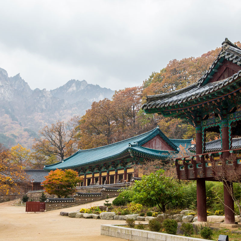Comprehensive South Korea Tour Image 6