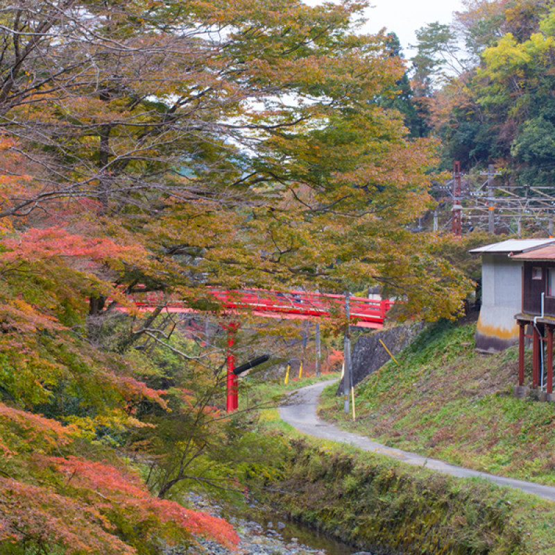 Japan Nakasendo Way: A journey into the heart of Japan Image 9
