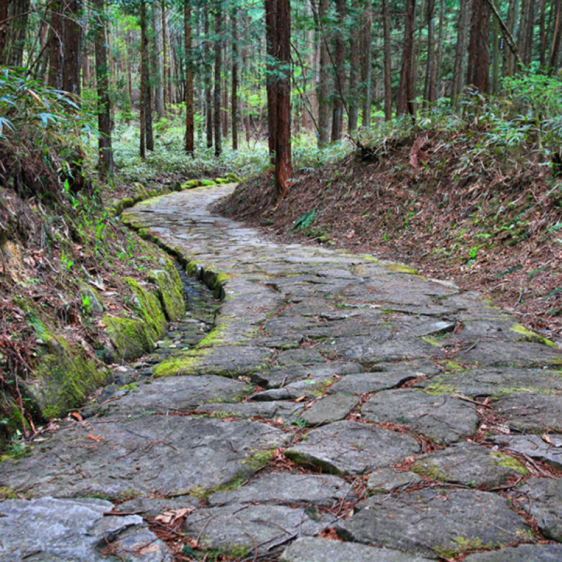 Japan Nakasendo Way:  A journey into the heart of Japan at a glance
