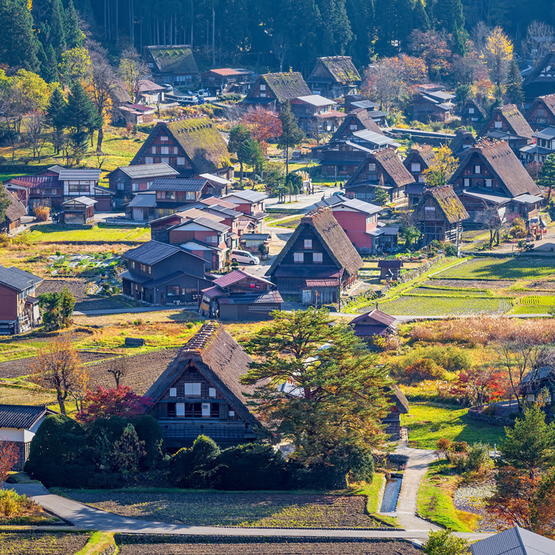 Japanese Alps, Snow Monkeys and Heritage Sites tour of Japan at a glance